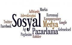 2011'de Kobiler ve Sosyal Medya