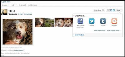 Flickr Yeni Sosyal Medya Eklentisiyle Fotoğrafların Paylaşımını Kolaylaştıracak