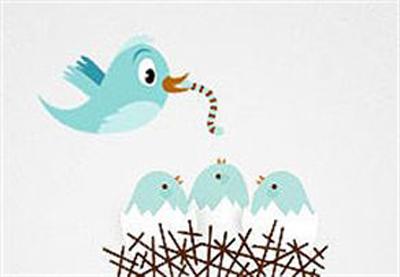 Twitter Dedektifi